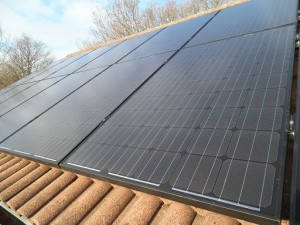 14 x Phonosolar 250W solar panels