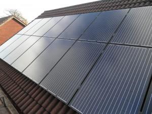 16 x Eco Future 250W solar panels